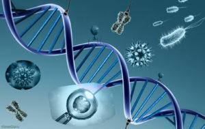 genetica talassemia